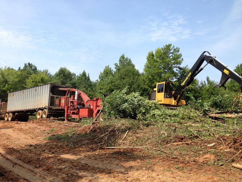 Wilco Timber Company, Inc  | Camden, al 36726